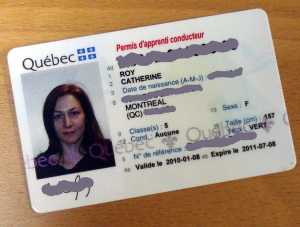 Photo du permis de conduire de Catherine Roy